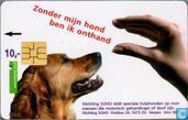 SOHO hond
