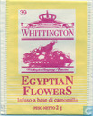 39 EgyptiaN FlowerS