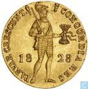 Netherlands Ducat 1828 you