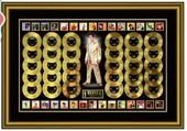 Check out our Thirty gold records by Elvis Presley in one frame # 30 hits VERY LIMITED