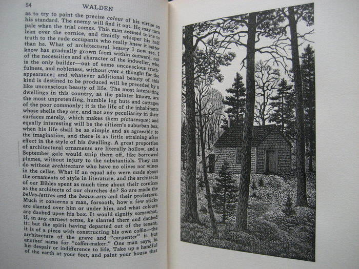 an introduction to the literature by thoreau The passage starting in paragraph two on page 81 in the norton critical edition of walden by thoreau clearly shows tension between nature and society as a train cuts through walden pond.