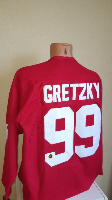 wayne gretzky the great one Nicknamed the great one, he has been called the greatest hockey player ever by many sportswriters, players, and the league itself  wayne gretzky was born on january 26, 1961 in brantford, ontario, the son of phyllis leone (hockin) and walter gretzky.