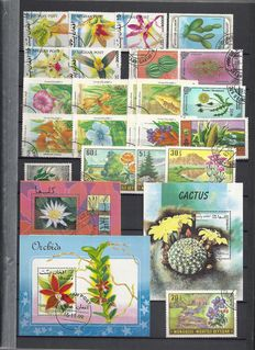 Flowers and Mushrooms - Topical collection with duplication in 2 stock books