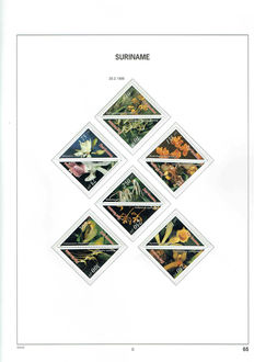 Republic of Suriname 1996/2010 - Collection in Davo Luxe wadded album with box