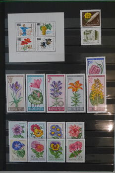 Flowers - Topical collection in stock book