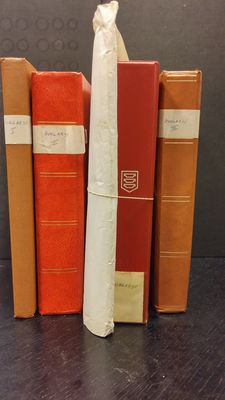 Hungary - Batch in 3 stock books, a binder and on album pages