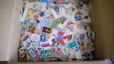 World - Collection of over 6000 stamps