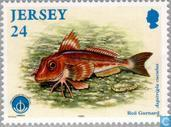 Postage Stamps - Jersey - Int. Year of the Ocean