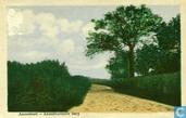 Postcards - Amersfoort - Amersfoort - Amersfoortsche Berg