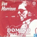 Vinyl records and CDs - Morrison, Van - Domino