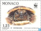 Timbres-poste - Monaco - WWF-tortue