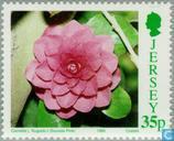 Postzegels - Jersey - Botanisch congres