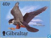 Postage Stamps - Gibraltar - Airplanes and birds