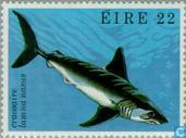 Postage Stamps - Ireland - Sea Creatures