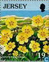 Postage Stamps - Jersey - European Nature Conservation Year