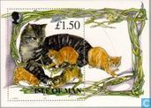 Postage Stamps - Man - Cats