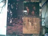 Disques vinyl et CD - Virgin Prunes - If I die I die