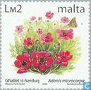 Timbres-poste - Malte - Fleurs