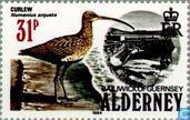 Postage Stamps - Alderney - Seabirds