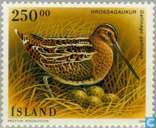 Briefmarken - Island - Vögel