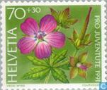 Postage Stamps - Switzerland [CHE] - Forest Flowers