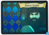 Trading cards - Harry Potter 1) Base Set - Rubeus Hagrid