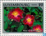 Timbres-poste - Luxembourg - Roses