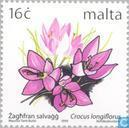 Postage Stamps - Malta - Native flowers