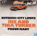 Vinyl records and CDs - Ike & Tina Turner - Nutbush City Limits