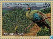 Timbres-poste - Nations unies - Genève - Animaux en voie de disparition