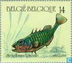 Postage Stamps - Belgium [BEL] - Fishing