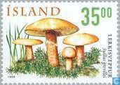Postage Stamps - Iceland - Mushrooms