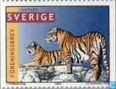 Pour 1998 Tigers. Brev