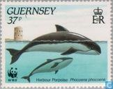 WWF-sea life à Guernesey