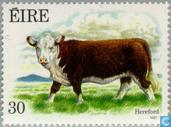 Postage Stamps - Ireland - Cattle