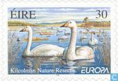 Postage Stamps - Ireland - Europe - Nature reserves and parks