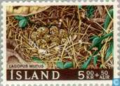 Postage Stamps - Iceland - Nest