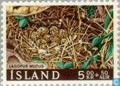 Postzegels - IJsland - Nesten