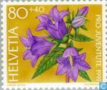 Postzegels - Zwitserland [CHE] - Bos-bloemen