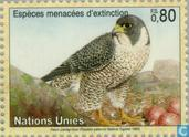 Postage Stamps - United Nations - Geneva - Endangered Animals