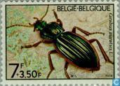 Postage Stamps - Belgium [BEL] - Flora and fauna
