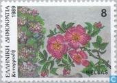 Postage Stamps - Greece - Flowers
