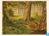 Ansichtkaarten - Vuurbaak, De - In het bos
