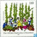Hopfenanbau 898-1998