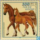 Briefmarken - Deutschland, Bundesrepublik [DEU] - Pferderassen