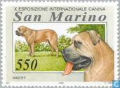 Postage Stamps - San Marino - Dogs