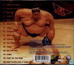 Platen en CD's - Aerosmith - Big Ones