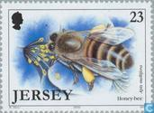 Timbres-poste - Jersey - Insectes