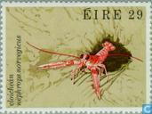 Briefmarken - Irland - Sea Creatures