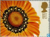 Briefmarken - Großbritannien [GBR] - Blumen